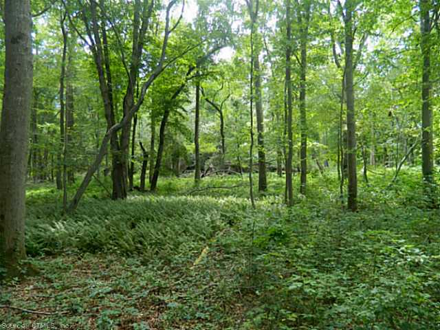 Residential Land - Old Lyme, CT (photo 3)
