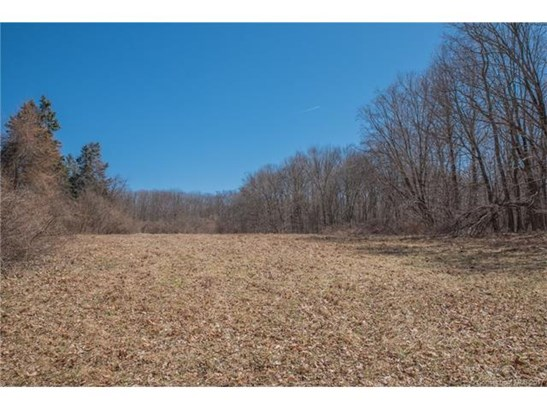 Residential Land - East Haddam, CT (photo 4)