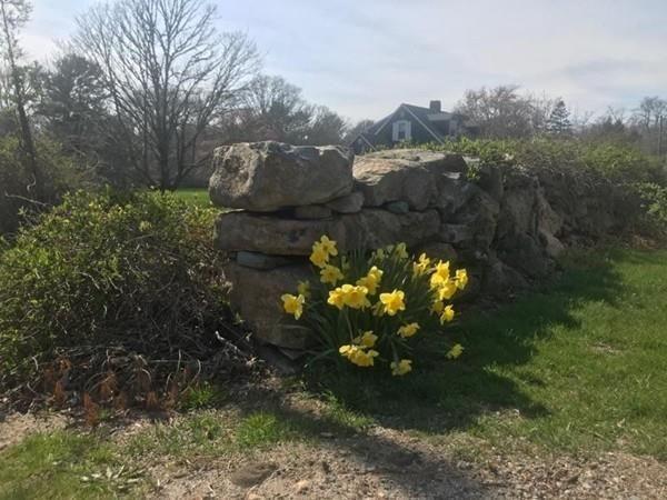 0 Scotch Pine Lane, Westport, MA - USA (photo 4)