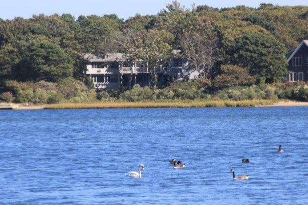 43 Bournes Pond Road, Falmouth, MA - USA (photo 1)
