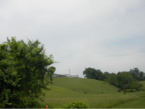 Vacant Land - Greeneville, TN (photo 3)