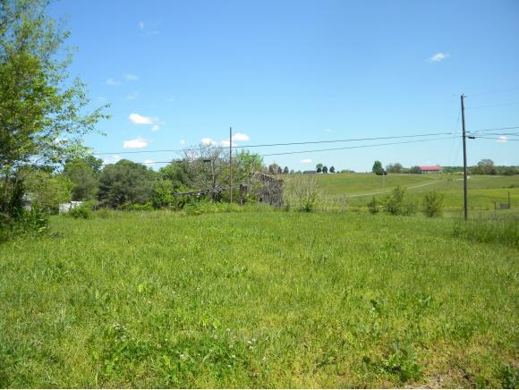 Vacant Land - Chuckey, TN (photo 1)