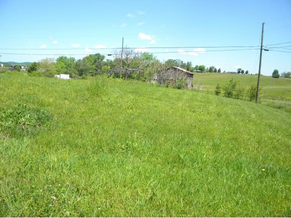 Vacant Land - Chuckey, TN (photo 2)
