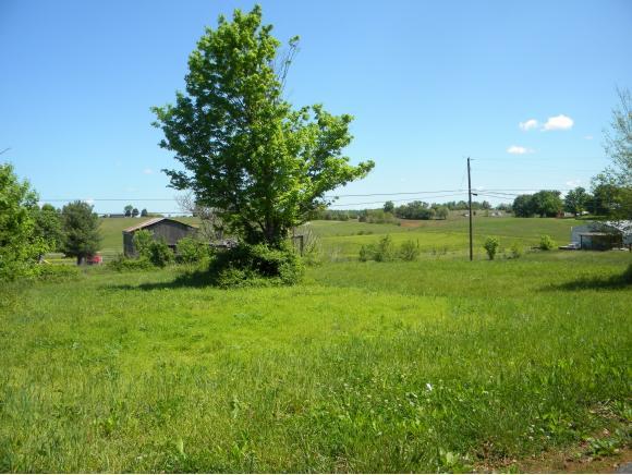Vacant Land - Chuckey, TN (photo 3)