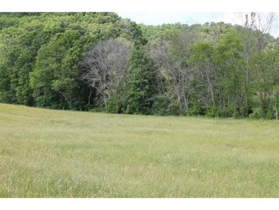 Vacant Land - Surgoinsville, TN (photo 5)