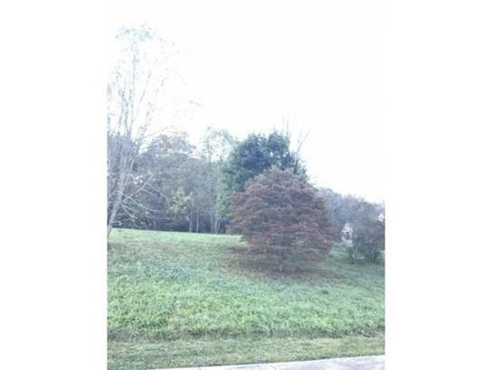 Vacant Land - Jonesborough, TN (photo 4)