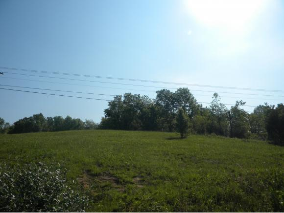 Vacant Land - Greeneville, TN (photo 2)