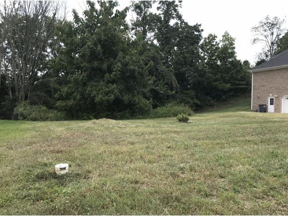 Vacant Land - Kingsport, TN (photo 3)
