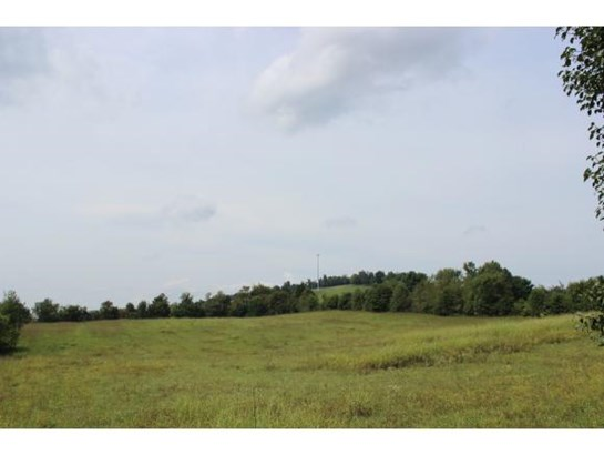Vacant Land - JONESBOROUGH, TN