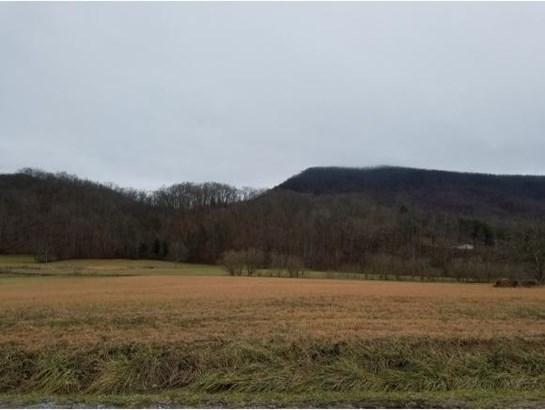 Vacant Land - Rogersville, TN (photo 1)