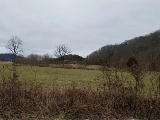 Vacant Land - Rogersville, TN (photo 2)