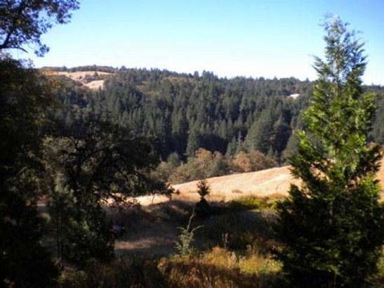 000 Burr Valley Road, Bridgeville, CA - USA (photo 1)