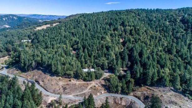 39450 Hwy 36, Bridgeville, CA - USA (photo 1)