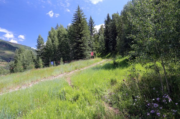 1170 Westhaven Lane, Vail, CO - USA (photo 4)