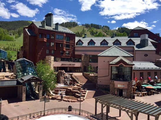 61 Avondale Lane # 209, Beaver Creek, CO - USA (photo 3)