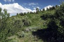 620 Jouflas Ranch Road, Wolcott, CO - USA (photo 1)