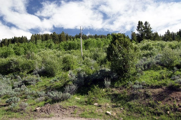 620 Jouflas Ranch Road, Wolcott, CO - USA (photo 4)