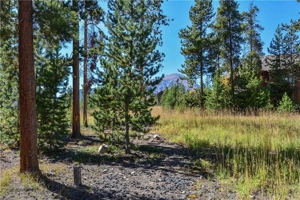 230 Easy Bend Trail, Silverthorne, CO - USA (photo 2)