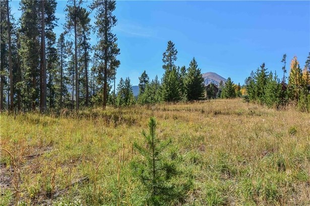 230 Easy Bend Trail, Silverthorne, CO - USA (photo 4)