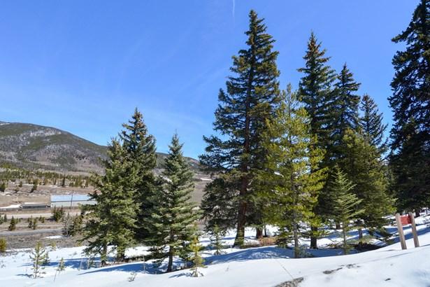 154 Summerwood Drive, Dillon, CO - USA (photo 2)