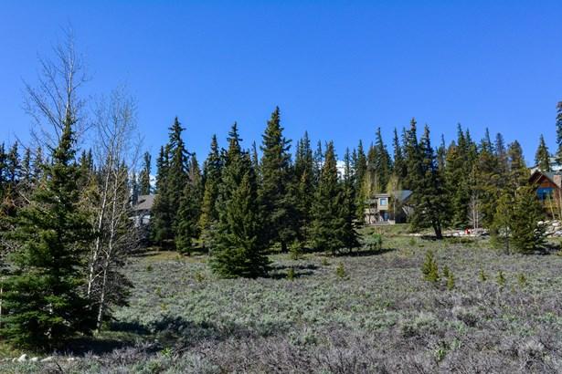 154 Summerwood Drive, Dillon, CO - USA (photo 5)