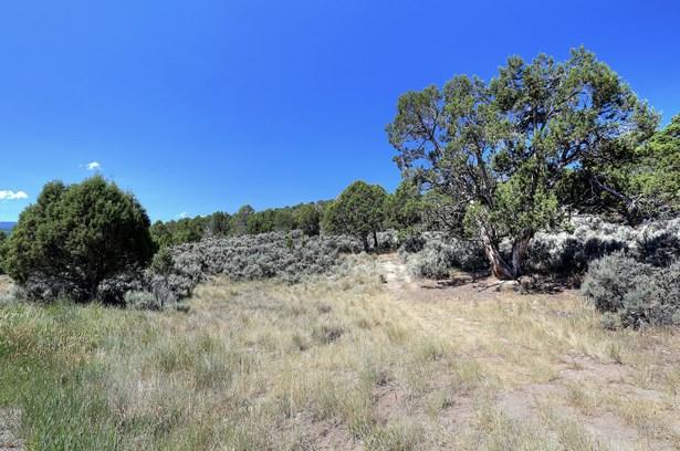 1028 Hernage Creek Road, Eagle, CO - USA (photo 1)