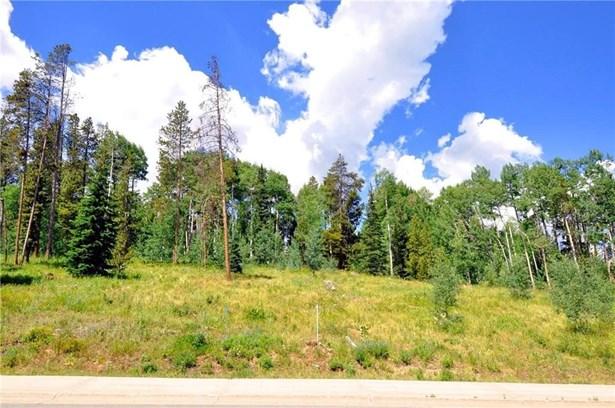 1615 Golden Eagle Road, Silverthorne, CO - USA (photo 1)