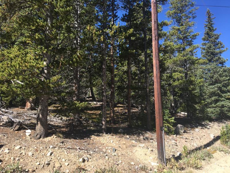 320 Gold Trail Circle, Fairplay, CO - USA (photo 1)