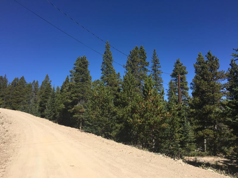 320 Gold Trail Circle, Fairplay, CO - USA (photo 3)