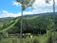 185 Elk Track Road, Beaver Creek, CO - USA (photo 1)