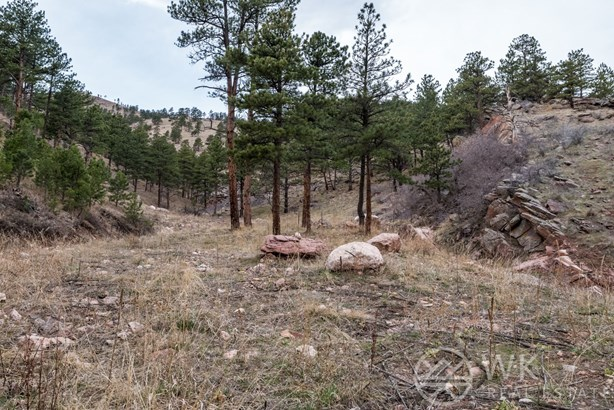 2144 Lefthand Canyon Drive, Boulder, CO - USA (photo 2)