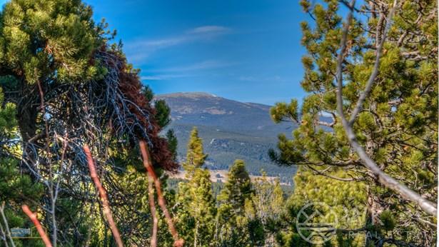 87 Peakview Drive, Nederland, CO - USA (photo 4)
