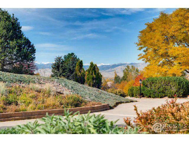 8277 Cattail Drive, Niwot, CO - USA (photo 4)