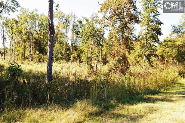 Acreage - Winnsboro, SC (photo 3)