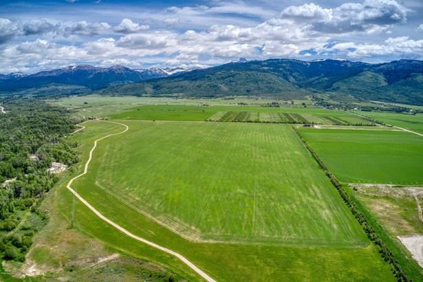 Farm, Farm and Ranch - Driggs, ID