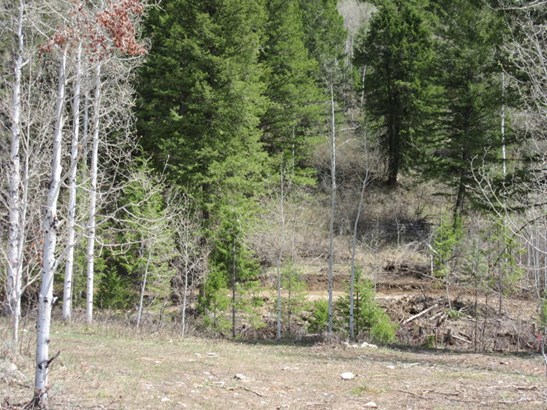 Building Site - Star Valley Ranch, WY (photo 5)