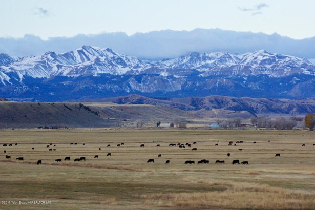 Cattle Ranch, Farm and Ranch - Meeteetse, WY (photo 1)
