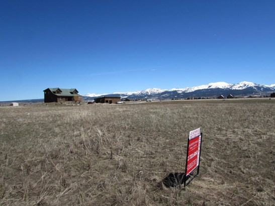 Building Site - Driggs, ID (photo 3)