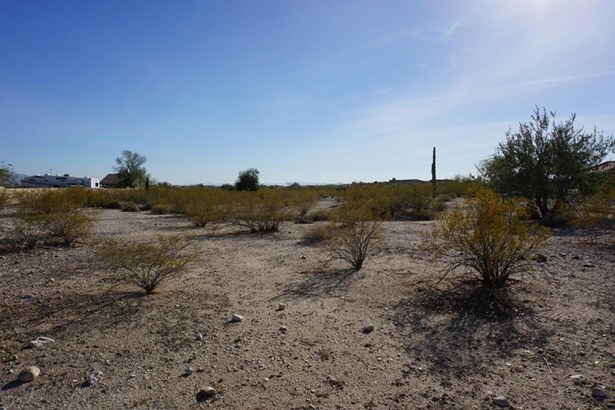 Residential Lot - Litchfield Park, AZ (photo 2)