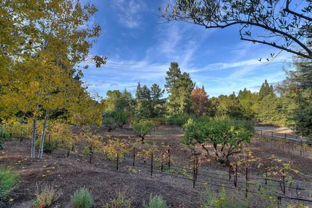 26052 West Fremont Road, Los Altos Hills, CA - USA (photo 3)