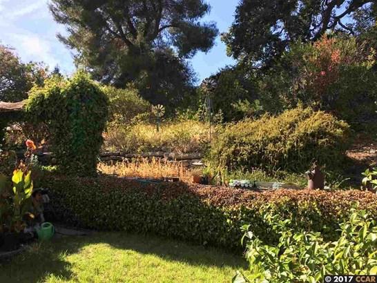 111 Bales Dr, Walnut Creek, CA - USA (photo 4)