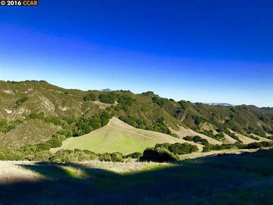 Bollinger Canyon Road, Moraga, CA - USA (photo 3)