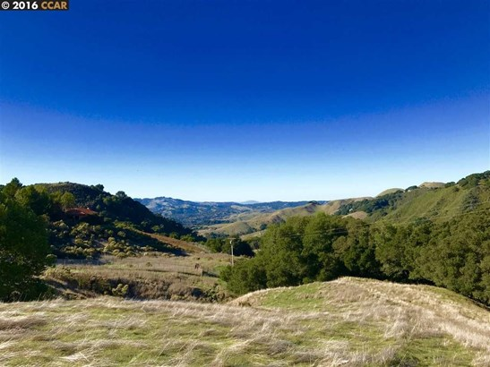 Bollinger Canyon Road, Moraga, CA - USA (photo 5)