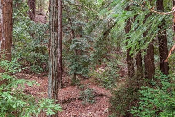 475 Summit Springs Road, Woodside, CA - USA (photo 2)