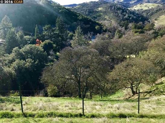Leon Drive, Clayton, CA - USA (photo 4)