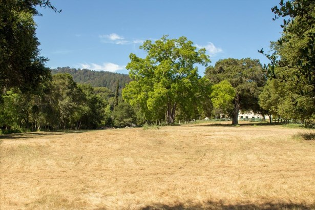 80 Roberta Drive, Woodside, CA - USA (photo 4)