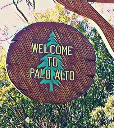 3190 Berryessa Street, Palo Alto, CA - USA (photo 1)