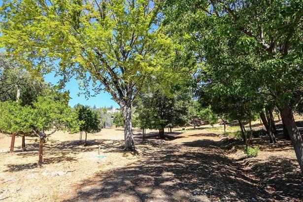 12815 Deer Creek Lane, Los Altos Hills, CA - USA (photo 4)
