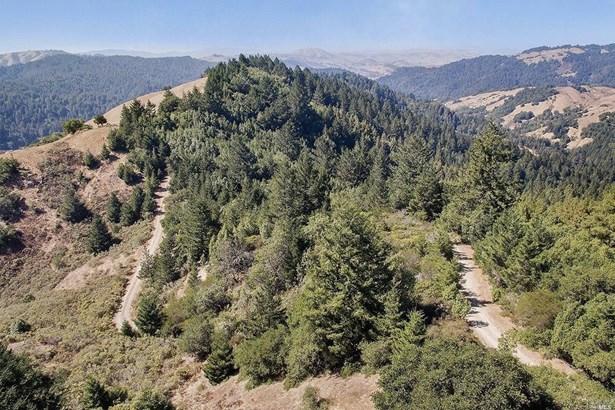 0 Camino Margarita Road, Nicasio, CA - USA (photo 3)