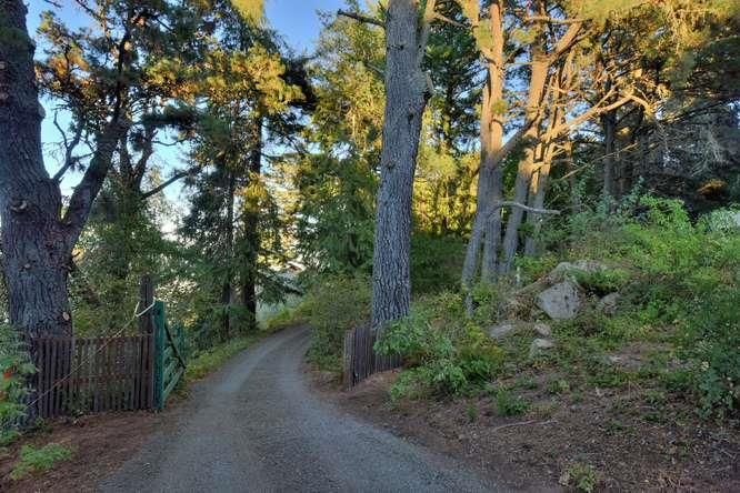 19765 Skyline Boulevard, Portola Valley, CA - USA (photo 5)